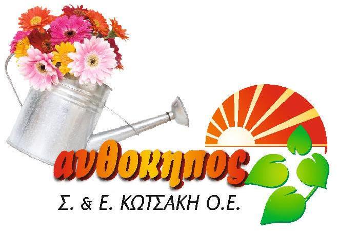 kotsaki.gr